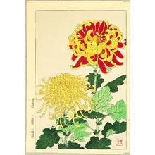 Kawarazaki Shodo: Chrysanthemums - Artelino