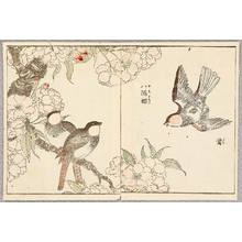 Kitao Shigemasa: Birds and Cherry - Artelino