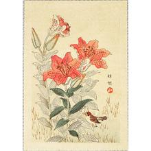 幸野楳嶺: Sparrow and Tiger Lilies - Artelino