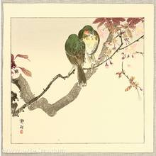 静湖: Green Bird on a Branch - Artelino