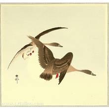Ohara Koson: Two Wild Geese - Artelino