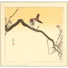 Ohara Koson: Sparrow on Plum Branch - Artelino