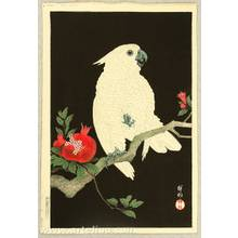 小原古邨: Cockatoo and Pomegranate - Artelino