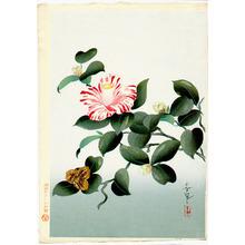 Ono Bakufu: Camellia - Artelino