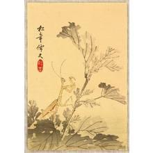 Suzuki Shonen: Praying Mantis - Artelino