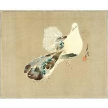 Ogata Gekko: Two Pigeons - Artelino