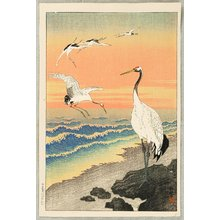 小原古邨: Cranes on Seashore - Artelino