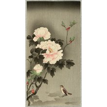 Imao Keinen: Sparrow and Peonies - Artelino
