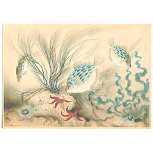 Ono Bakufu: Aquarium - Artelino