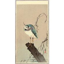 小原古邨: Green Heron - Artelino