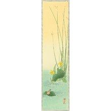 古峰: Frog on a Leaf - Artelino