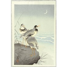 小原古邨: Three Plovers and Crescent Moon - Artelino