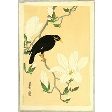 小原古邨: Indian Hill Minor and Magnolia - Artelino