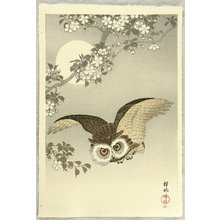 小原古邨: Flying Owl - Artelino