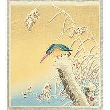 Ohara Koson: Kingfisher - Artelino
