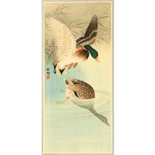 Ohara Koson: Two Mallard Ducks in a Pond - Artelino