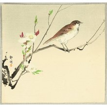 Seiko: Bird and Cherry Blossoms - Artelino