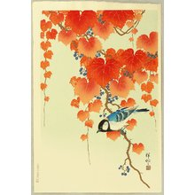 小原古邨: Bird on Paulownia - Artelino