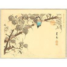 今尾景年: Keinen Kacho Gakan Juni Zu - Blue Headed Bird - Artelino
