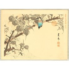 Imao Keinen: Keinen Kacho Gakan Juni Zu - Blue Headed Bird - Artelino