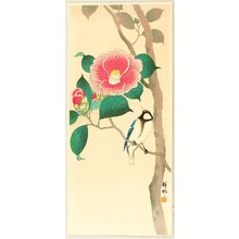 小原古邨: Bird on Camellia - Artelino