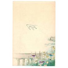 宮川春汀: Iris Garden - Artelino