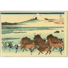 Katsushika Hokusai: Fugaku Sanju-rokkei - Nitta - Artelino