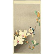 Ohara Koson: Blue Bird and Magnolia - Artelino