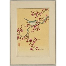 小原古邨: Bush Warbler and Plum - Artelino
