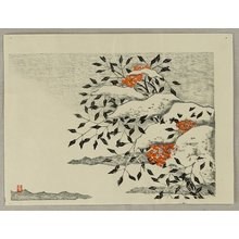 Aoyama Masaharu: Nandin in Snow - Artelino