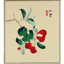 Takeuchi Seiho: Camellia - Artelino