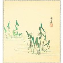 Taniguchi Kokyo: Water Plants - Artelino