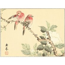 Imao Keinen: Birds and Cotton Rose - Artelino