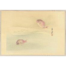 Ogata Gekko: Fish - Artelino