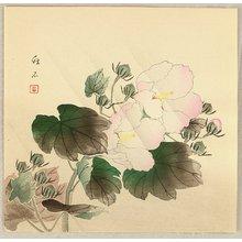 長町竹石: China Rose - Artelino
