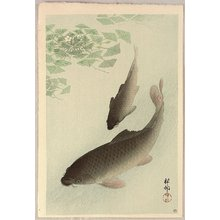 小原古邨: Two Carp and Blooming Water Plants - Artelino