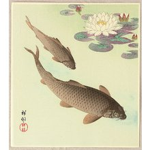 Ohara Koson: Two Carp and Water Lily Pad - Artelino