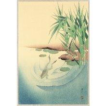 Watanabe Seitei: Frogs in a Pond - Artelino