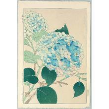 Kawarazaki Shodo: Hydrangea (Hotensin) - Artelino