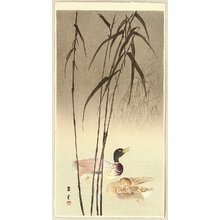 Yamamoto Shoun: Mallard Ducks - Artelino