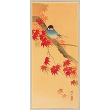 Ito Sozan: Blue Bird in Autumn - Artelino