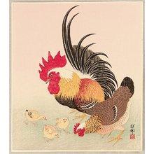 Ohara Koson: Chicken Family - Artelino