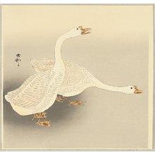 小原古邨: Two White Geese - Artelino