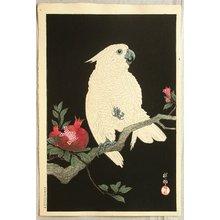 Ohara Koson: Cockatoo on Pomegranate - Artelino