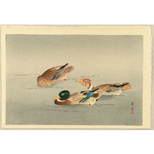 Unknown: Three Ducks - Artelino
