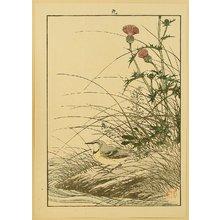 今尾景年: Keinen Gafu - Gray Wagtail and Thistle - Artelino