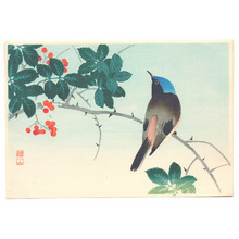 Ito Sozan: Blue Head Bird on Nanten Tree - Artelino