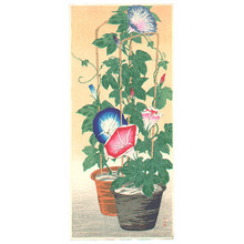 高橋弘明: Morning Glories - Artelino