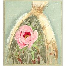 Yamamoto Koun: Peony in Winter - Artelino