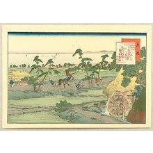 Fujikawa Tamenobu: Famous Places of Tokaido, Shanks Mare - Fujieda - Artelino